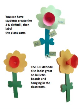 Bundle of Spring {Symmetry, Vocabulary, Life Cycles, Poetry, & more!}