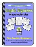 Bundled Graphic Organizers for Macromolecules