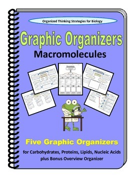 Bundled Graphic Organizers for Macromolecules