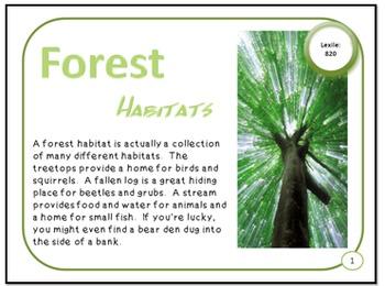 Bundled Minibooks and PDF Presentation Forest Habitats