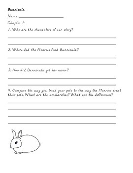 Bunnicula Chapter Questions, Quiz, Extension Activities