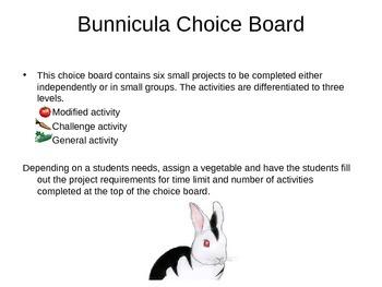 Bunnicula Differentiated Choice Board