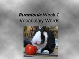 Bunnicula Novel Study 3rd Grade