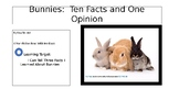 Bunnies Ebook:  Ten Facts and One Opinion with Song