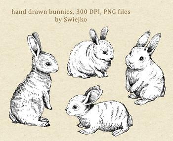 Bunnies - hand drawn clipart set