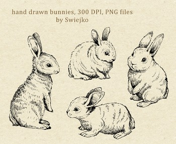 Bunnies - hand drawn clipart set