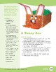Bunny Art Projects