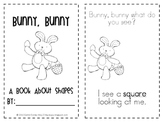 Bunny, Bunny: Flat Shapes