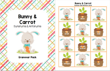 Bunny & Carrot - Synonym and Antonym Grammar Pack