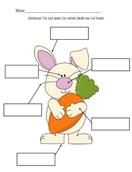 Bunny Labeling Activity