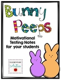 Bunny Peeps Motivational Testing Note