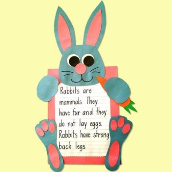 Bunny Rabbit Craft