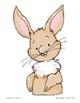 Bunny--Sequencing