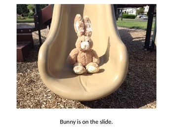 Bunny at the Park - Level B eBook
