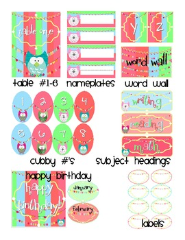 Buntings, Owls and Much, Much More!  Classroom Decor Set