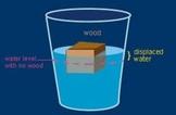 Buoyancy/Sink or Float