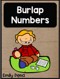 Burlap Numbers 0-20