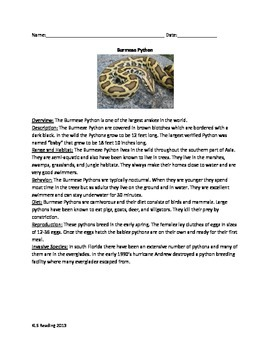 Burmese Python - Review Article Questions Vocabulary Info Facts Word Search
