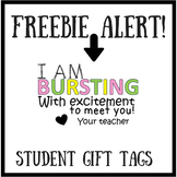 Bursting With Excitement Student Gift Tags