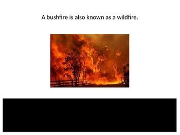 Bushfires Matching
