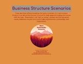 Business Structure Scenarios