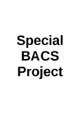 Business and Communication Systems Special Project
