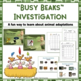 "Animal Adaptations ""Busy Beaks"" Fun Hands On STEM Investigation Activity"