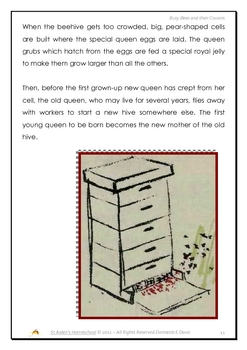 Busy Bees and Their Cousins, a Thematic Unit Study