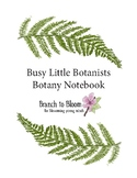 Busy Little Botanists Notebook, Lessons 1-3