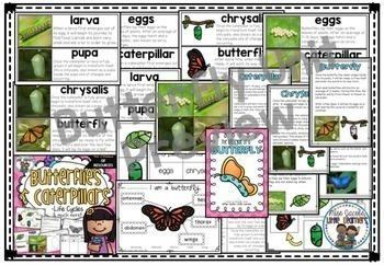 Butterflies: A Butterfly & caterpillar non-fiction unit Living Things