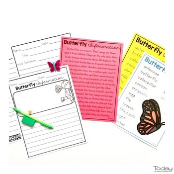 reading comprehension passages and questions - Butterflies