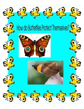 Butterflies Adapting to their Environment