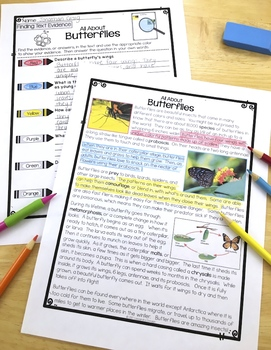 Differentiated Butterflies Reading Passages with Vocabulary & Comprehension