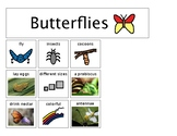 Butterflies Can Have Are Tree Map