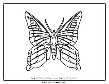 Butterflies Coloring Book 107 pages
