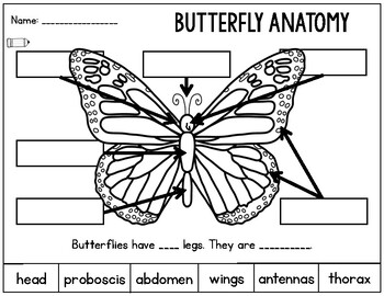Butterflies: Differentiated Science and Literacy Activities