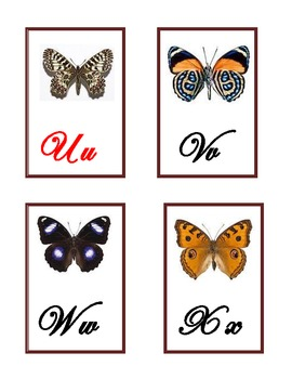 Butterflies Display a Cursive Alphabet