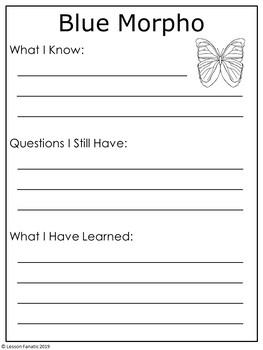 Butterflies Non Fiction Mini Books