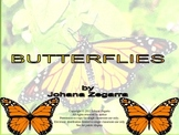 Butterflies -Facts and Much More!