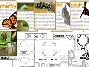 Butterflies: Inquiry & Science Resources