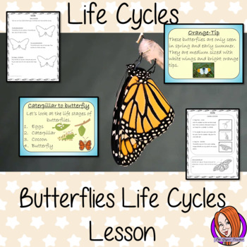 Life Cycles of a Butterfly Complete Science Lesson
