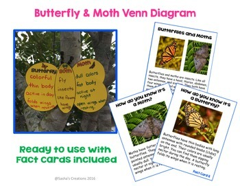 Butterflies & Moths Interactive Thematic Unit for Primary