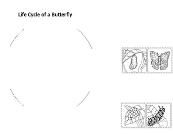 Butterflies (Science Notebook Pages)