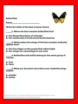 Butterflies Task Cards and Worksheet