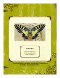 Butterflies Themed Nature Education Unit-Stage 2 (Magic Fo