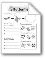 Butterflies (Thinking Skills)