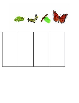Editable Butterflies Unit Pre-Assessment and Information Exchange Note Template