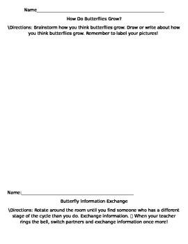 Editable Butterflies Unit Pre-Assessment and Information E