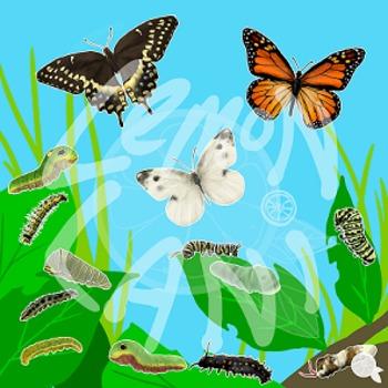 Butterflies and Caterpillars Clip Art