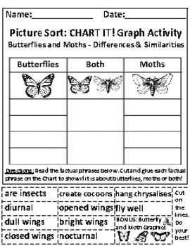 Butterflies and Moths: Chart Graphing Activities *Answer Keys Included!
